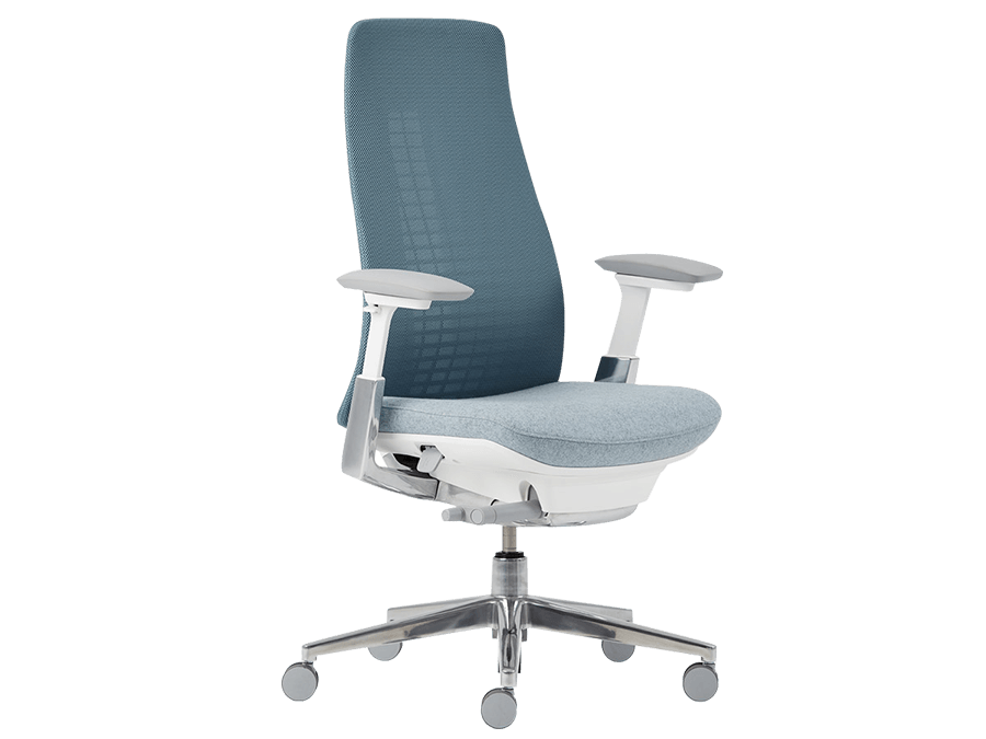 Chair that a HR consultant purchased from us